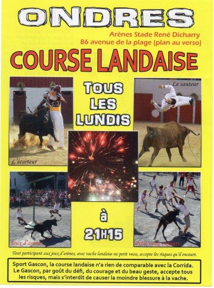 Courses Landaises 2017.jpg