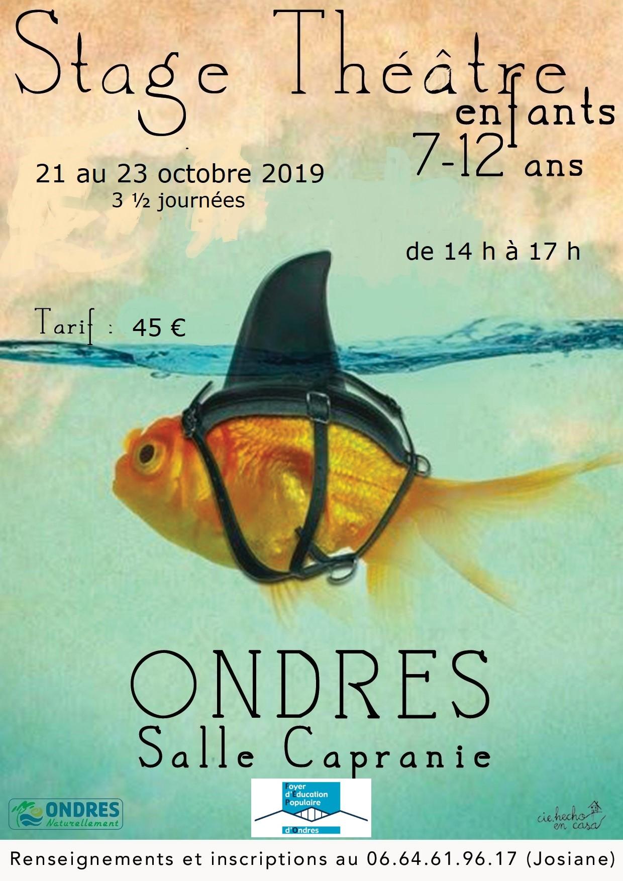 Affiche stage octobre 2019